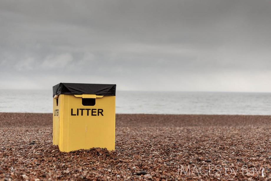 Litter Box Brighton Beach