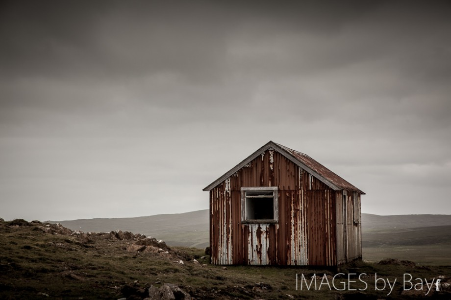 Red Shed Image
