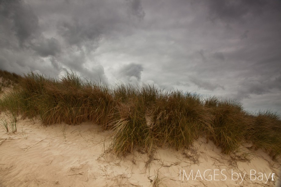 Image of Sand Dunes Canon 24-105mm